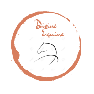 Divine Equine Health, Wellness & Rehabilitation