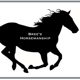 Bree's Horsemanship & Equine Therapy