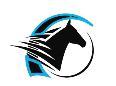 Twin Creeks Equine Magna Wave and Massage Therapy