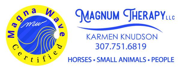 Magnum Therapy, LLC