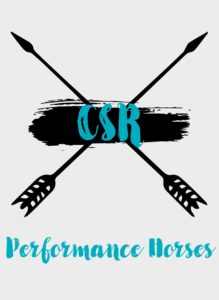 CSR Performance Horses