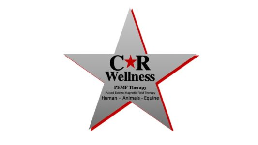 CR Wellness PEMF Therapy