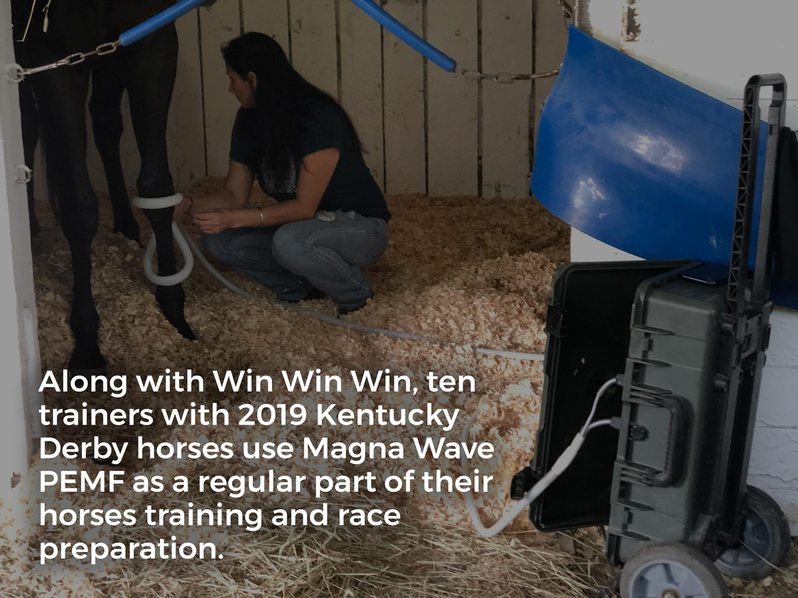 Along with Win Win Win, ten trainers with 2019 Kentucky Derby horses use Magna Wave PEMF as a regular part of their horses training and race preparation.
