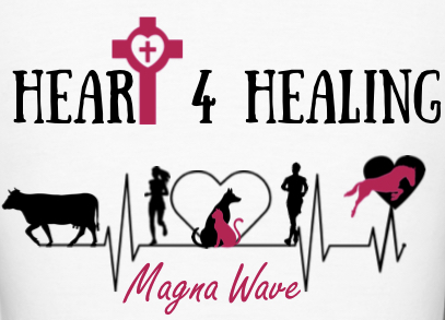 Heart 4 Healing, LLC