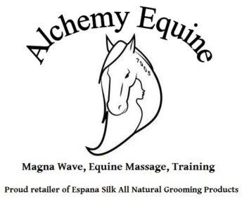 Alchemy Equine