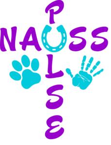 Nauss Pulse PEMF Therapy
