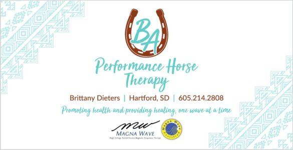 BA Performance Horses LLC