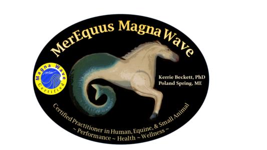 MerEquus MagnaWave