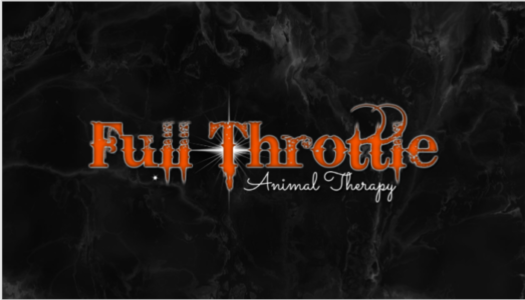 Full Throttle Animal Therapy