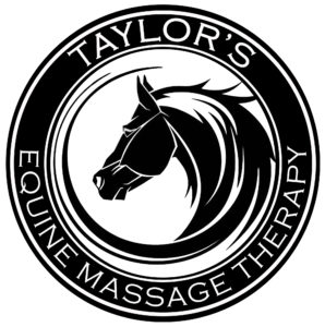 Taylor's Equine Massage Therapy