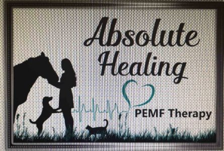 Absolute Healing PEMF therapy