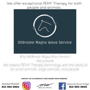 DEBrooke Magna Wave Service
