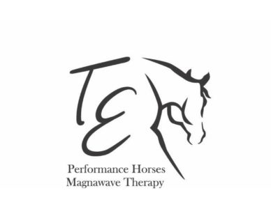 TE Magnawave Therapy